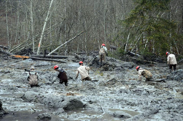 Members of the Washington Air National Guard wade through mud and debris looking for signs of missing persons.