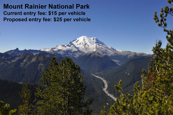 A view of Mount Rainier and White River