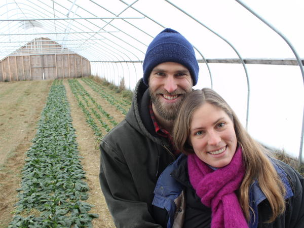 """Buying land is <a href=""""http://www.npr.org/blogs/thesalt/2013/12/26/257391197/heres-how-young-farmers-looking-for-land-are-getting-creative"""">a challenge</a> for many young farmers, but Gene and Mary Margaret Ripley found an affordable property in Maine. This high tunnel lets them produce cold-hardy crops like spinach into mid-winter."""