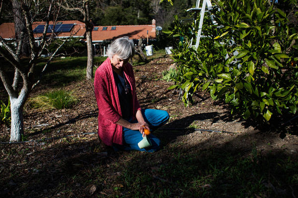 Evans recently retired from nursing. Her husband says the consistent pain she's experienced since her injury in 2010 has made it difficult to do the things she used to enjoy — such as gardening.