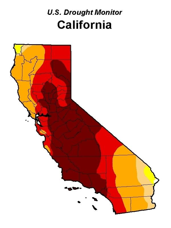 """The U.S. Drought Monitor reports that more than 67 percent of California is experiencing """"extreme drought."""" Only the tiniest sliver of the state has escaped the ongoing drought conditions."""