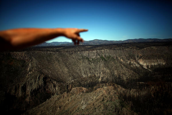 "Craig Allen, a research ecologist with the United States Geological Survey, points to the devastation in Bandelier's Cochiti Canyon, which was burned by the Las Conchas fire. According to Allen, these megafires are ""the new normal."""