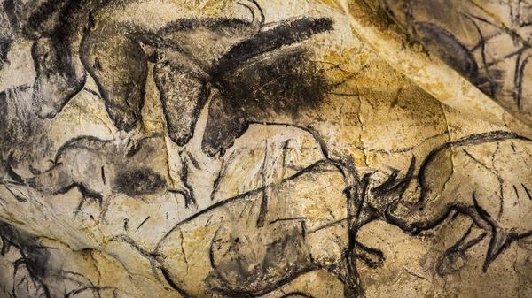 Until about 30,000 years ago — around the same time these animals were drawn on the walls of France's Chauvet Cave — there were at least five other species of humans on the planet.