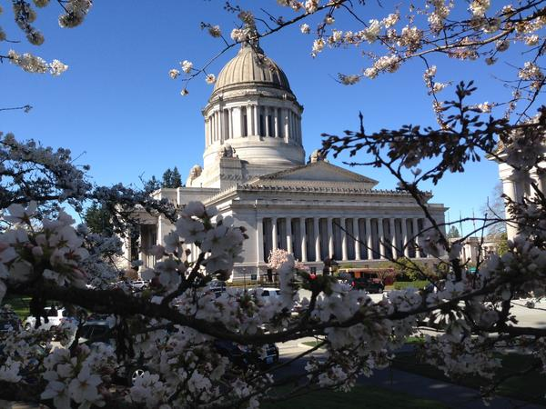 Cherry blossoms are already out at the Washington Capitol as a key cutoff deadline passes to move bills out of their House of origin.