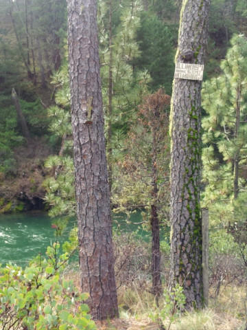 <p>A mining claim on the Illinois River in Southern Oregon. The Illinois has been one of the most gold-rich waterways in the state.</p>