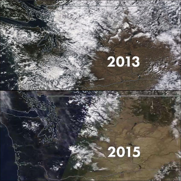 Satellite images show the difference in the Washington state snowpack between 2013 and 2015.