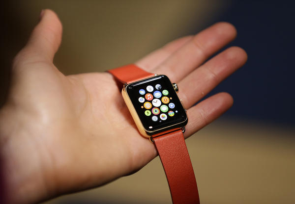 The Apple Watch Edition, the company's high-end model.