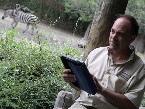 Vint Virga, a veterinarian who specializes in behavioral medicine, has been working mostly with leopards, wolves, bears, zebras and other animals living in zoos and wildlife parks for the past five years.