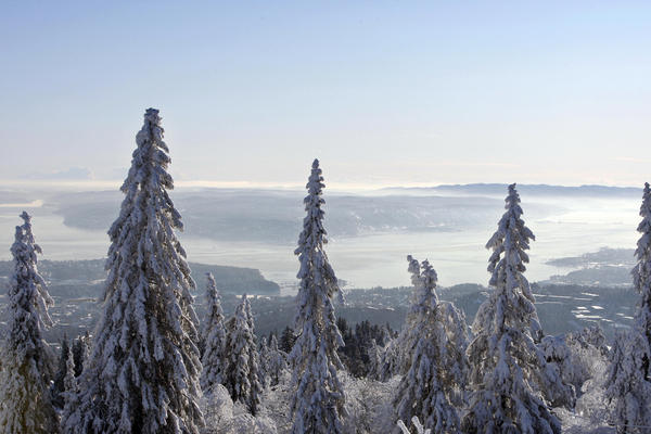 """A view of Oslo, Norway, taken from the surrounding hills. Author Michael Booth says Norwegians were traditionally thought of as Scandinavia's """"country bumpkin."""""""