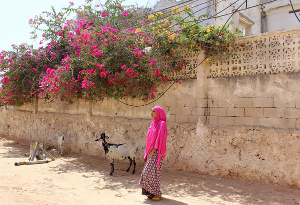 Ugaaso Boocow is back — and instagramming — in her homeland of Somalia.
