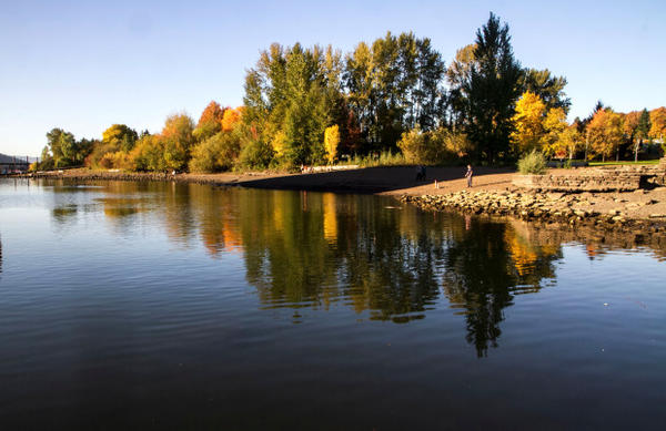 <p>Fall colors reflect in the Willamette River in Portland's Cathedral Park underneath the St. John's Bridge.</p>