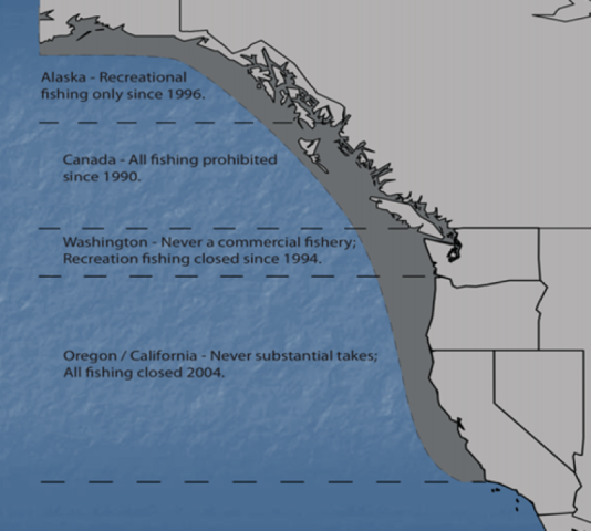 <p>Harvest regulations for the pinto abalone on the West Coast.</p>