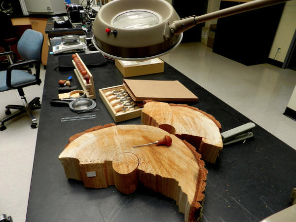 <p>Scientists at the USFWS Forensics Lab are using innovative techniques to identify wood samples.</p>