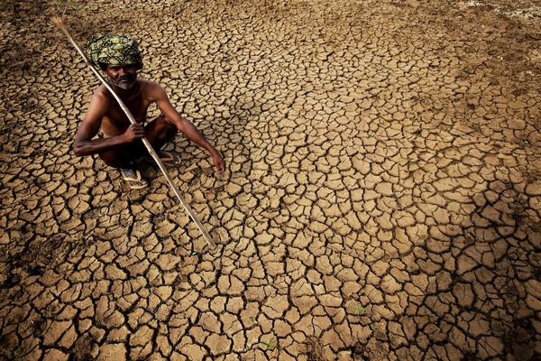 An Indian farmer sits Tuesday in his dried-up land in Gauribidanur village, in southern India's Karnataka state. More than 750 people have died in a heat wave that has swept across the country.