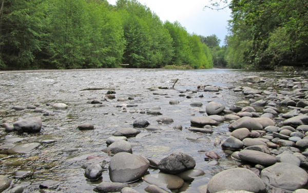 <p>The Dungeness River relies heavily on snowmelt from the Olympic Mountains to provide water for more than 6,000 acres of farms in the northern part of the Olympic Peninsula near Sequim, Washington. In May, flows in the river were less than half of normal.</p>