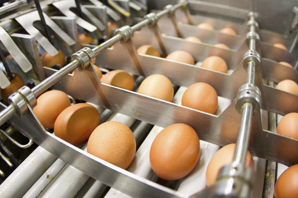 Prices for wholesale eggs doubled in May, while prices for shell eggs in grocery stores have also risen.