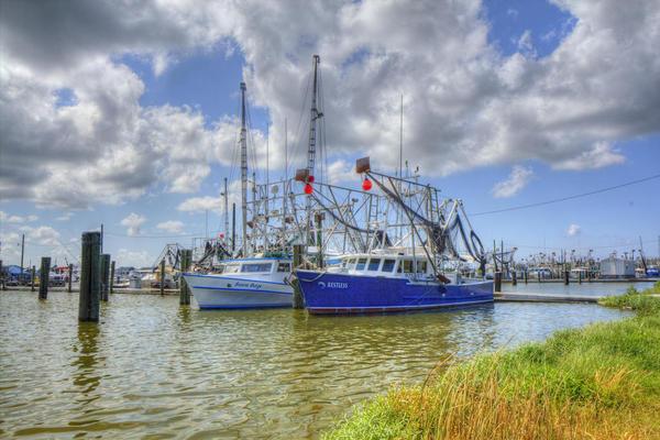 Shrimp boats docked in Venice, Louisiana.