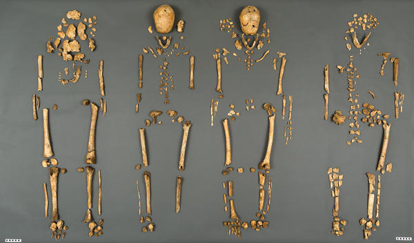 A team of scientists from the Smithsonian's National Museum of Natural History and Jamestown Rediscovery announced the identities Tuesday of the Rev. Robert Hunt, Capt. Gabriel Archer, Sir Ferdinando Wainman and Capt. William West. The long-dead men were leaders who helped shape the future of America during the initial phase of the Jamestown settlement in the early 1600s.