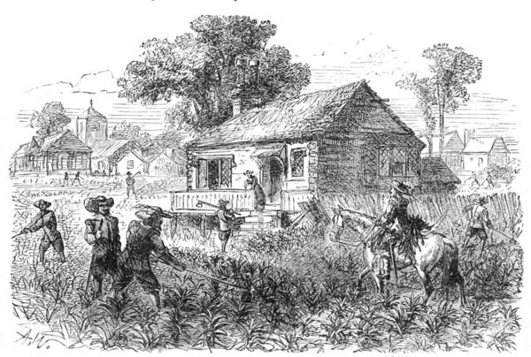 An 1878 engraving depicting tobacco cultivation at Jamestown, circa 1615.