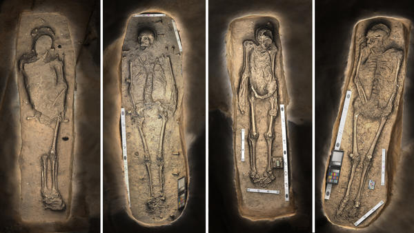 3-D renderings of four skeletons found buried near the altar of an early church in the Jamestown settlement in Virginia.