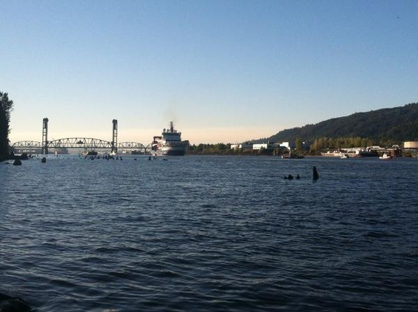 <p>The Fennica turned back early Thursday after a brief standoff with environmental activists who dangled from Portland's St. John's Bridge in an attempt to block the Shell icebreaker's return to Alaska.</p>
