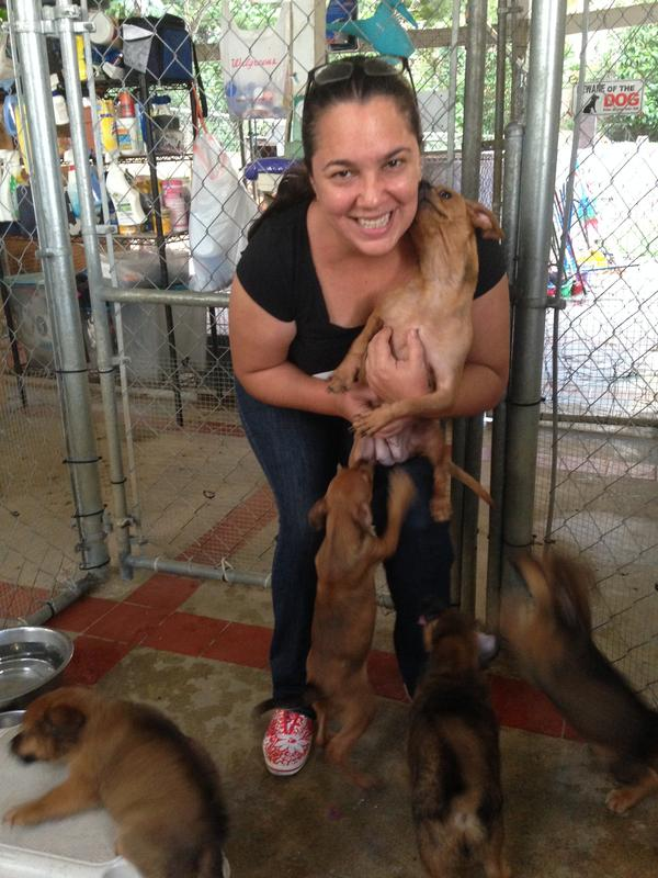 "Michelle Cintron works with the Puerto Rico Alliance for Companion Animals. ""Dogs are everywhere on the island,"" she says. ""Once you see them, you can't turn your back to them."""