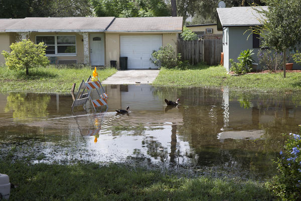 The Gulf Highlands neighborhood in West Pasco was one of several affected by flooding because of continuous rain the past three weeks.