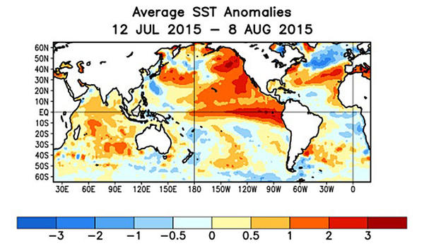 Sea surface temperature anomalies in degrees Celsius show the El Niño as the dark red band across the equatorial Pacific.