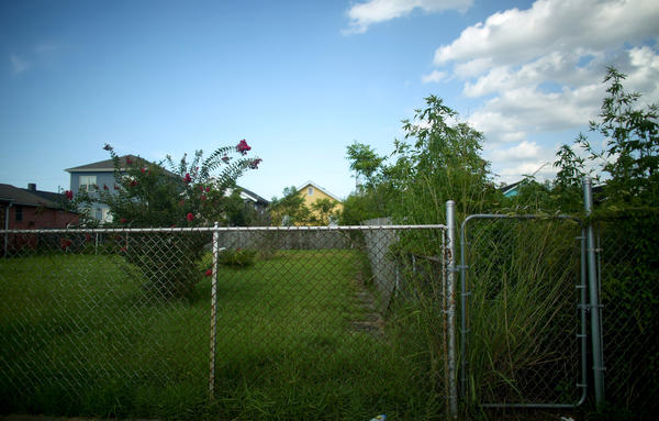 """Where houses once stood there are now just empty lots and overgrown gardens in the 7th Ward of New Orleans. It's known here as the """"jack-o'-lantern syndrome"""": A rebuilt house represents the teeth; a weedy lot, the gaps between them."""
