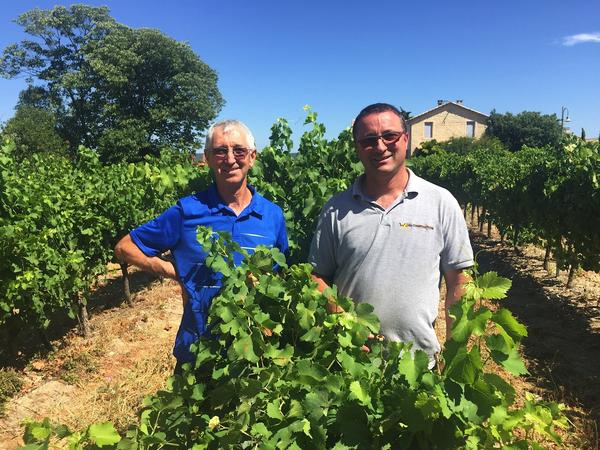 Robert Blanc (left) and his brother, Didier, stand in the middle of their vineyard,<strong> </strong>Domaine Saint Firmin, near the town of Uzes, in southern France. The area is known for its<strong> </strong>rosé wine in the summertime, and Robert Blanc says American importers have come looking for theirs.