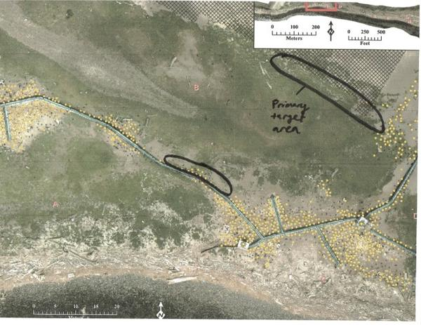 <p>An aerial image of East Sand Island with areas targeted for shooting cormorants, according to documents obtained through a public records request.</p>