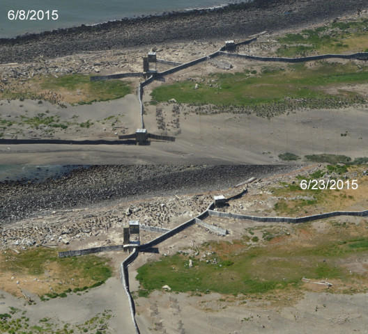<p>A composite of two aerial photos taken on two different days showing fewer birds in one area of East Sand Island over time.</p>