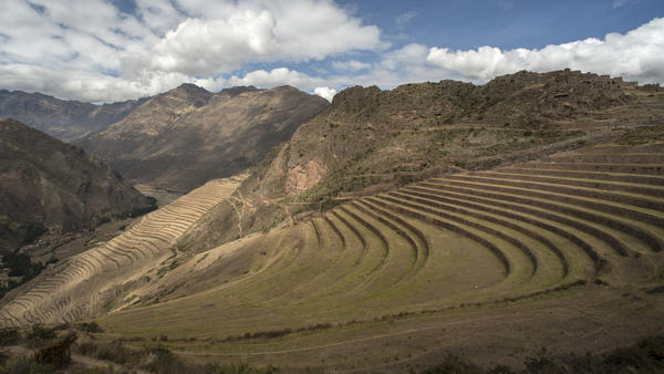 The Inca were innovators in agriculture as well as engineering. Terracing like this, on a steep hillside in Peru's Colca Canyon, helped them grow food.