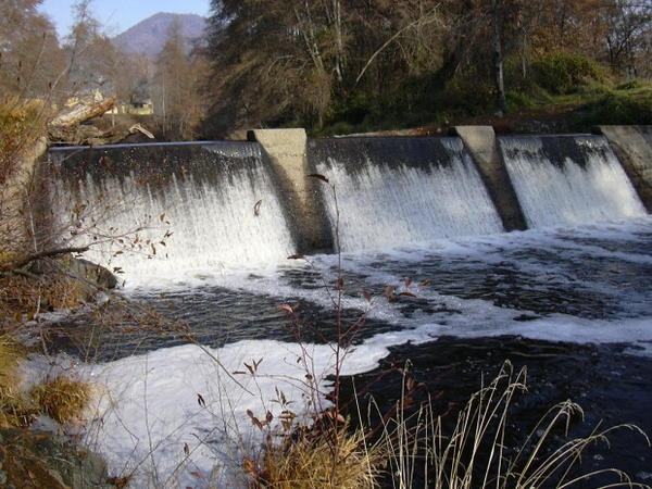 <p>Threatened coho salmon jump up against the Wimer Dam.</p>