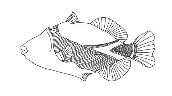 The very fish itself: the <em>humuhumunukunukuāpua'a</em> that Yoon's husband, David Yoon, drew for her in the wee hours.