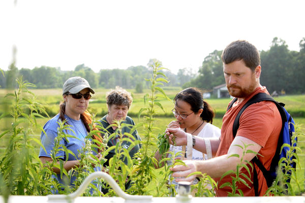 Rachel Mifsud (far left) leads her students through a pasture to find edible wild plants.