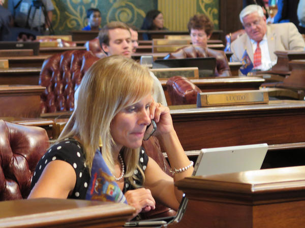 Michigan Rep. Cindy Gamrat, R-Plainwell, sits at her desk on the House floor last month. She was expelled from the chamber early Friday.