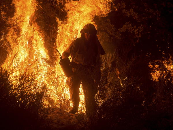 A firefighter lights a backfire while battling the Butte fire near San Andreas, California, on Saturday.