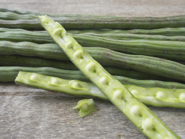 The seeds of pods from the moringa tree taste like green beans, only sweeter. And they're good for you, too.