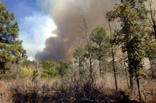 Wildfire burning between Bueschner and Bastrop State Parks