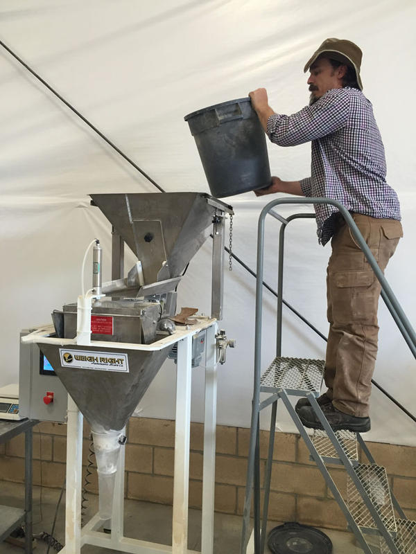 The Teff Company founders' son Gareth Carlson joined the family business. Here he loads teff flour into a packaging machine.