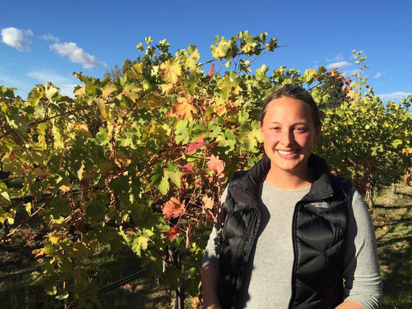 Lacey Lybeck says a lot more of her grapes should be showing fall color, or falling off the vines already. She's worried a cold snap could damage next year's fruit.