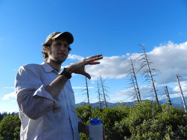 <p>Portland State University PhD student Charles Maxwell is studying forest type-shifts.</p>