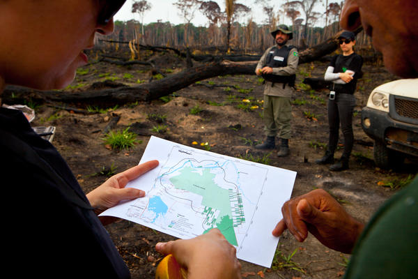 Members of the environmental team survey a map of the Jacunda National Forest during their operation.