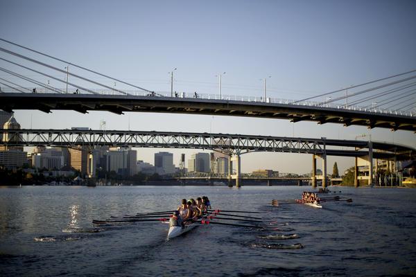 Rose City Rowing Club under Tilikum Crossing, Bridge of the People, in Portland.