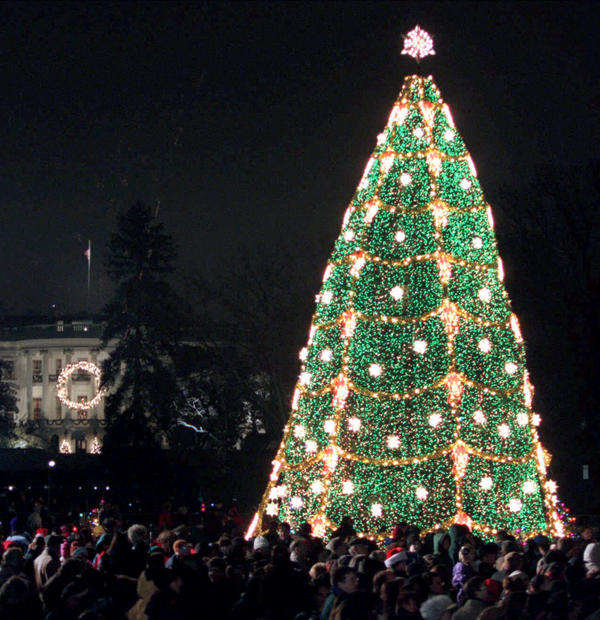 The National Christmas Tree on the Ellipse near the White House after being lit at the annual Pageant of Peace ceremony in December 2000.