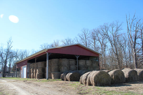 These bales of hay at Roger Bardot's farm will keep his cattle fed through the winter, once the grass in his pastures runs out or gets covered by too much snow and ice.