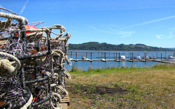 <p>An unusually quiet summer day at the Port of Willapa Harbor in Tokeland, Washington. Normally, crabbing boats would be going out to set crab pots or returning with a fresh catch. But a toxic algae bloom has closed the crab harvest.</p>