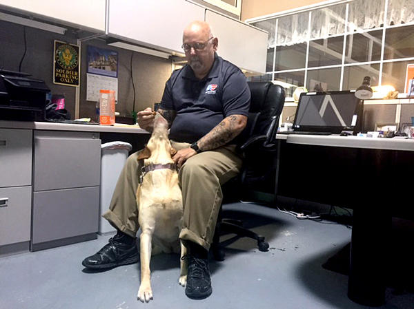 Jay Springstead, a Vietnam veteran who has post-traumatic stress disorder, started working at Patriot PAWS after his youngest son, an Iraq combat vet who also had PTSD, took his own life.