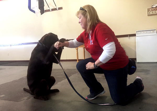 Cheryl Woolnough, director of training at Patriot PAWS in Rockwall, Texas, works with Papi, a Labrador retriever.